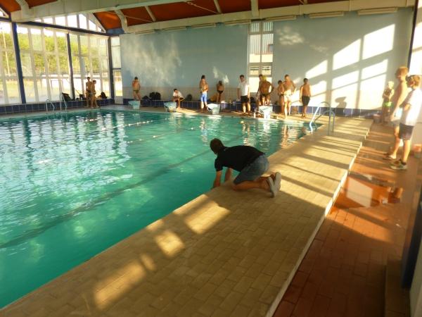 Zeljko Bijuk swimming video analysis